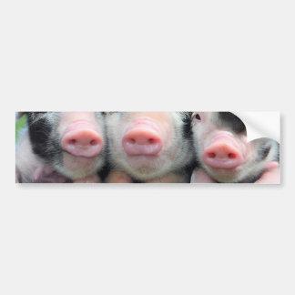 Three little pigs - cute pig - three pigs bumper sticker