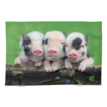 Three little pigs - cute pig - three pigs kitchen towel