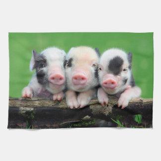 Three little pigs - cute pig - three pigs kitchen towel