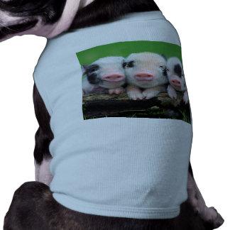 Three little pigs - cute pig - three pigs T-Shirt