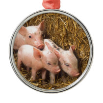 Three Little Pigs Metal Ornament