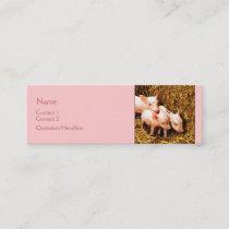 Three Little Pigs Mini Business Card
