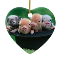 Three little pigs - three pigs - pig hat ceramic ornament