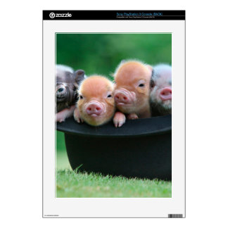 Three little pigs - three pigs - pig hat decals for PS3 console