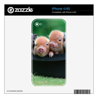 Three little pigs - three pigs - pig hat decals for the iPhone 4