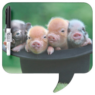 Three little pigs - three pigs - pig hat Dry-Erase board