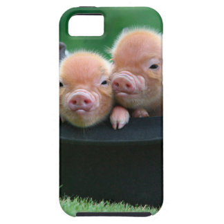 Three little pigs - three pigs - pig hat iPhone SE/5/5s case