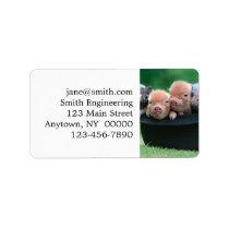 Three little pigs - three pigs - pig hat label