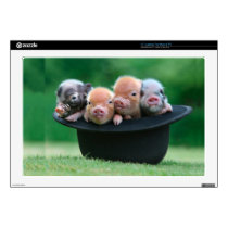 Three little pigs - three pigs - pig hat laptop skin