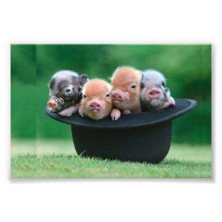 Three little pigs - three pigs - pig hat photo print