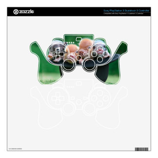 Three little pigs - three pigs - pig hat PS3 controller decals