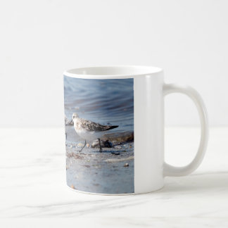 Three little stints at Quiberon in France Coffee Mug