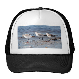 Three little stints at Quiberon in France Trucker Hat