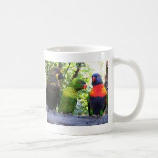Three Lorikeets Coffee Mugs
