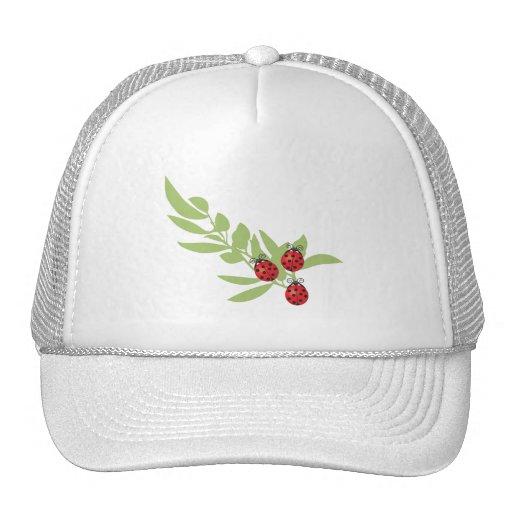 Three Lucky Ladybugs Mesh Hat