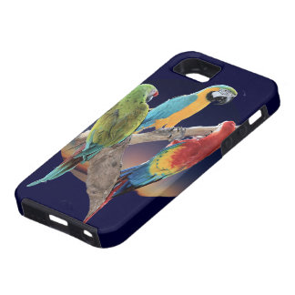 Three Macaws iPhone 5 Covers