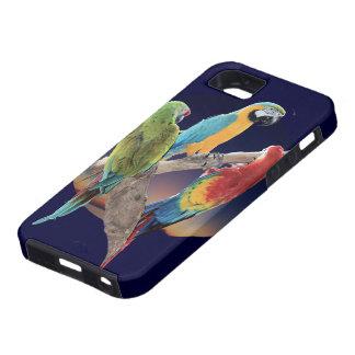 Three Macaws iPhone SE/5/5s Case