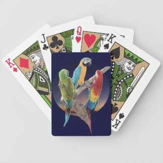 Three Macaws Poker Cards