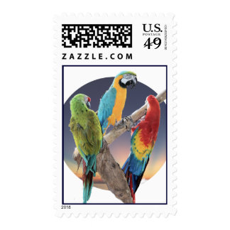 Three Macaws Postage