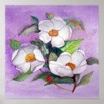 Three Magnolias Print