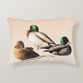 Three Mallard Ducks Accent Pillow