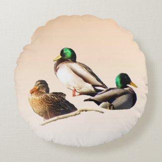 Three Mallard Ducks Round Throw Pillow