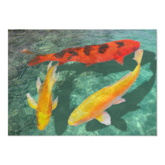 Three Mixed Koi in a Pool 5x7 Paper Invitation Card