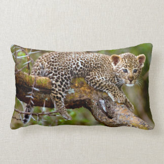 Three Month Old Leopard (Panthera Pardus) Cub Throw Pillow