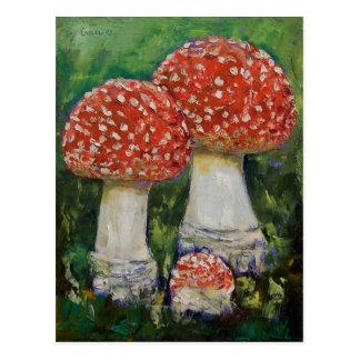 Three Mushrooms Postcard