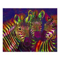 three neon zebras poster