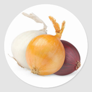 Three onions of various colors classic round sticker