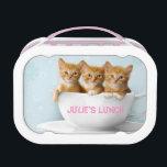 "Three Orange Cute Kittens Lunch Box Kids School<br><div class=""desc"">Three Orange Cute Kittens Lunch Box Kids School</div>"