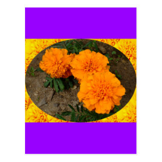Three Orange Marigolds Design Postcard