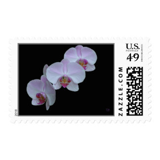 Three Orchid Postage
