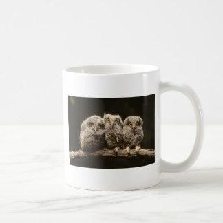 Three Owl Chicks Coffee Mug