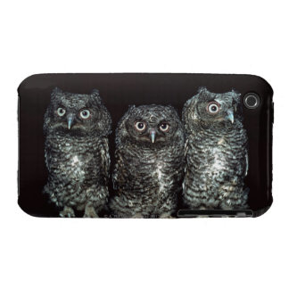 three owls iPhone 3 Case-Mate case