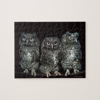 three owls jigsaw puzzle