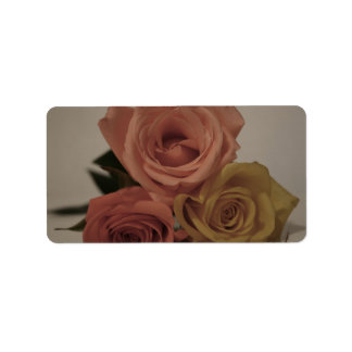 three pale roses Colored in vintage shades Address Label