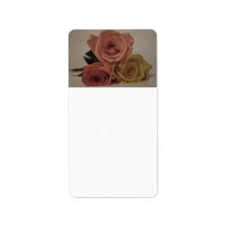 three pale roses Colored in vintage shades Labels