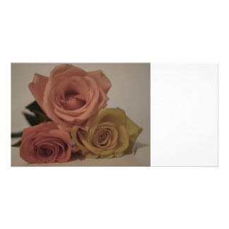 three pale roses Colored in vintage shades Personalized Photo Card