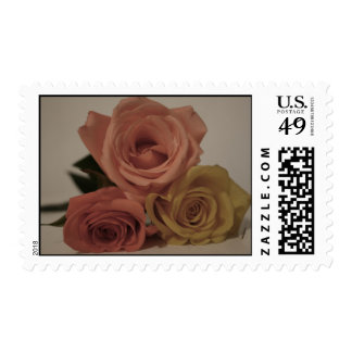 three pale roses Colored in vintage shades Postage Stamps