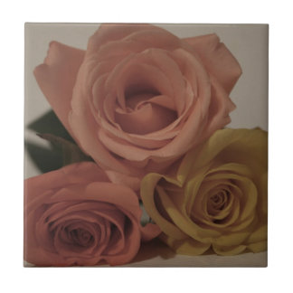 three pale roses Colored in vintage shades Tile