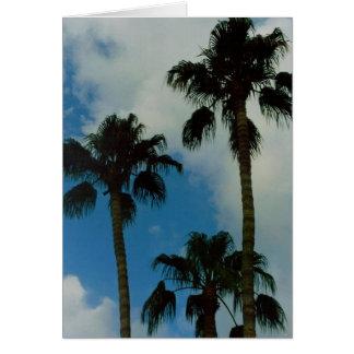Three Palms Card