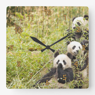 Three Panda Cubs Wall Clock
