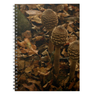 Three parasol mushrooms in the forest 2 spiral note books