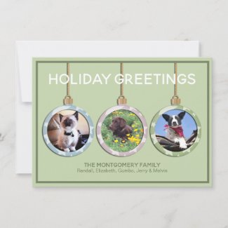 Three Pastel Ornament Pet Photo Christmas Holiday Card