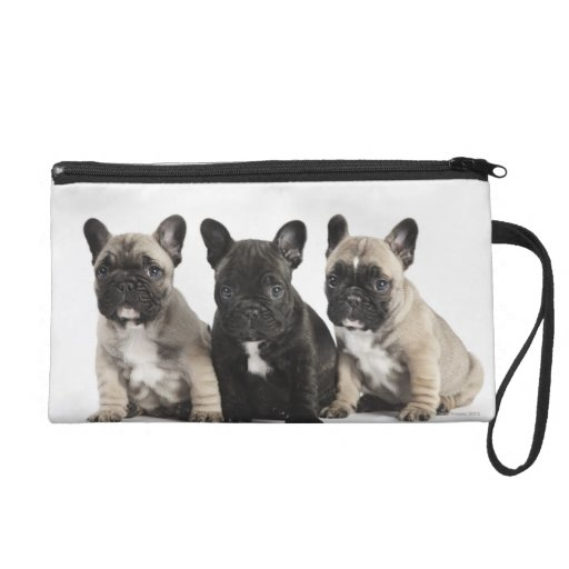 Three Pedigree Puppies Wristlet Purses