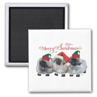 Three Pekingese Puppies Christmas Fridge Magnet
