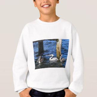 Three Pelicans in the Water Sweatshirt