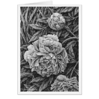 Three Peonies Pen and Ink Drawing Card